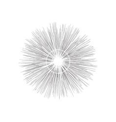 Engraving star Monochrome star burst vector