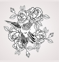 Hand drawn flying humming bird with rose flower vector