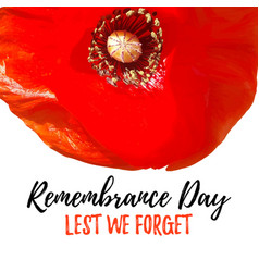 Remembrance day card lest we forget vector