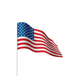 Usa flag isolated vector
