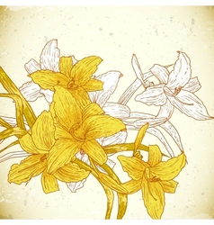 Floral background with yellow lilies vector image