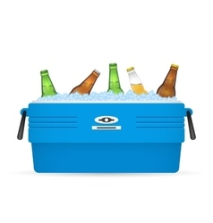 Ice cooler or beer in box on white vector
