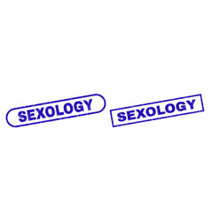 Sexology blue rectangle seal with corroded surface vector
