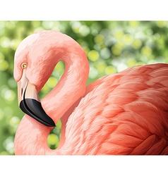 A beautiful flamingo vector