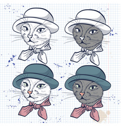 Color set of elegant cat women face vector