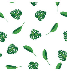 Green leaves of tropical plant palm and tree on vector