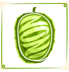 logo for noni fruit vector image vector image