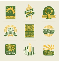 Wheat labels and badges vector image vector image