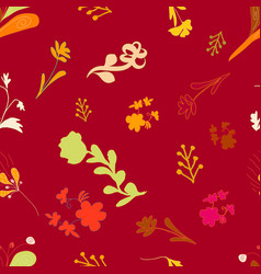 beautiful colourful hand drawn flowers vector image