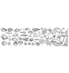 big set shells and sea animals vector image