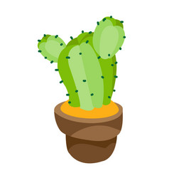 Cactus in a pot colored plants logo on a white vector