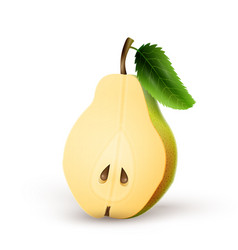 half-pear isolated on white background vector image