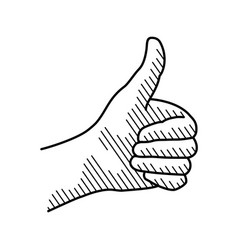 hand showing symbol like isolated on a white vector image