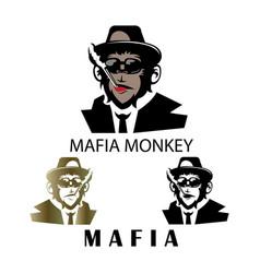 mafia logo mascot monkey design vector image