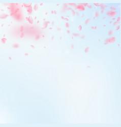 sakura petals falling down romantic pink flowers vector image