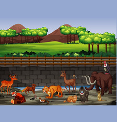 Scene with many animals at zoo vector