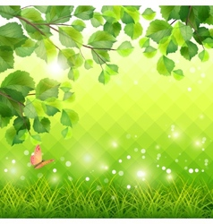 Green grass tree branch butterfly background vector