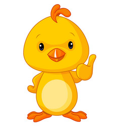 cute yellow baby chicken vector image