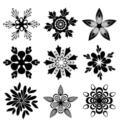 Graphic flowers set vector image vector image