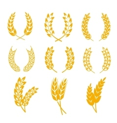 Rye wheat ears wreaths elements for bread vector image vector image