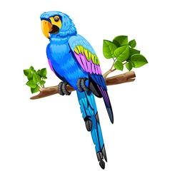 Big parrot vector