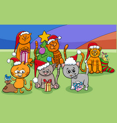 cartoon cats characters group on christmas time vector image