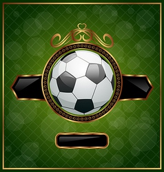 football background with ball vector image