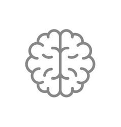 Human brain line icon healthy internal organ vector