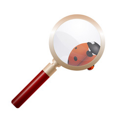 Magnifying glass ladybird education concept vector