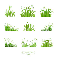 Set eco green grass vector