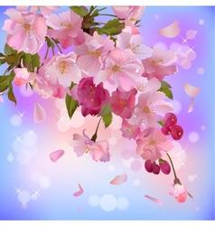 background with gentle sakura branch of flowers vector image vector image