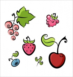 Berries collection vector