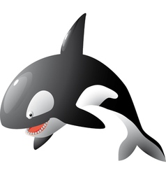 cartoon orca vector image