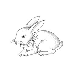 hand-drawn portrait rabbit easter bunny vector image