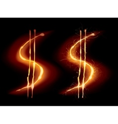 Hot dollar sign vector image