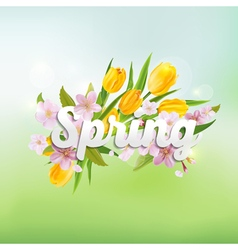Spring Background - with Tulips and Cherry vector image