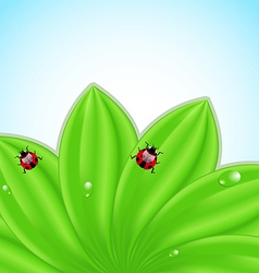 Green leaves ecology fresh background vector image vector image