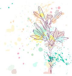 drawing lily flower vector image