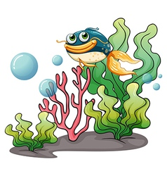 A fish under the sea vector image