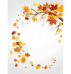 Autumn leaves swirl vector
