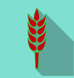 Bunch of wheat ears dried whole grains realistic vector