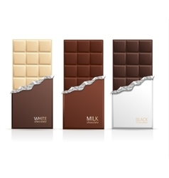 Chocolate Package Bar Blank vector