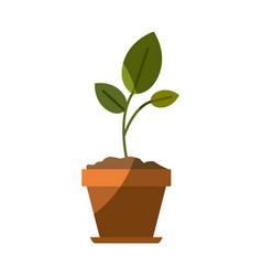 Colorful silhouette of small plant in flower pot vector