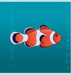 Cute fish clown cartoon pic vector