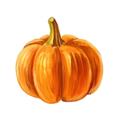 picture of Pumpkin vector image vector image