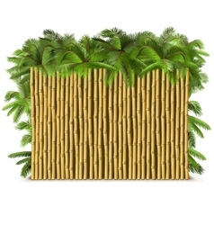 Bamboo Fence with Palm vector