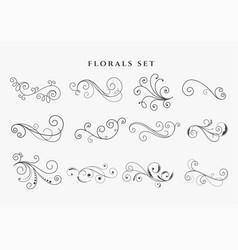 floral decorative ornaments set design vector image