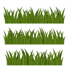 green grass borders set on white background vector image