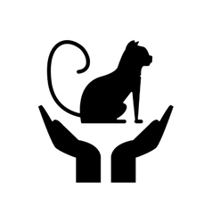 Isolated cat pet over hands design vector
