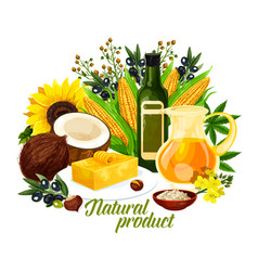 natural vegetable oil healthy food and cooking vector image